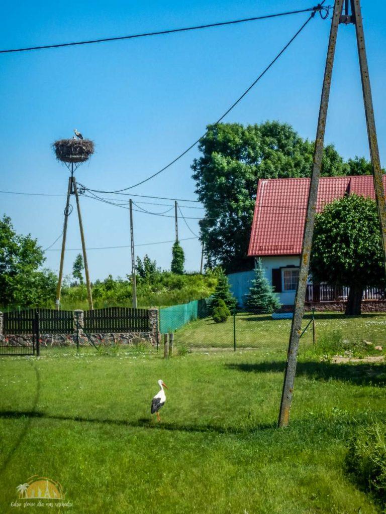 Mieszkańcy wsi Harsz