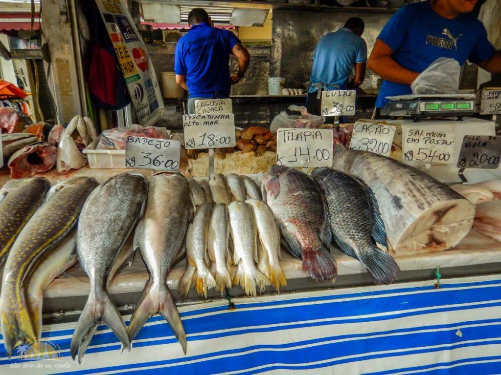Wybór świeżych ryb