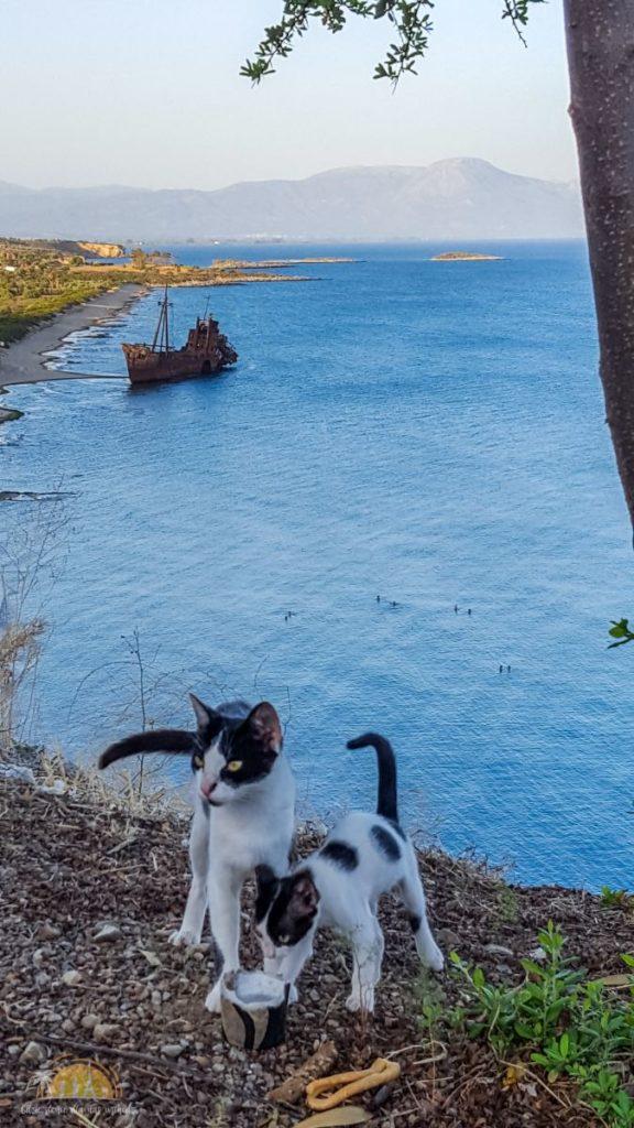 Grecja Peloponez mieszkańcy klifu i wrak statku Dimitrios