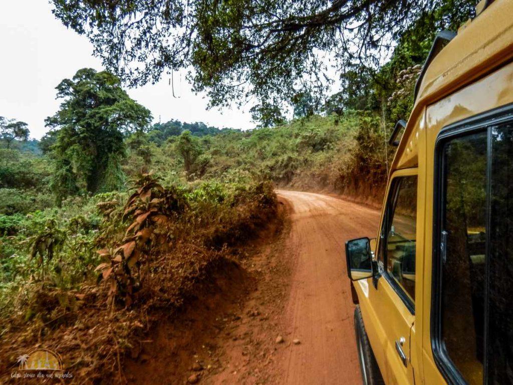 Tanzania safari (44)