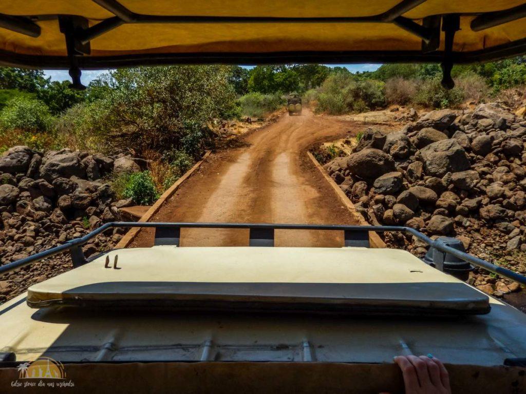 Tanzania safari Lake Manyara (12)