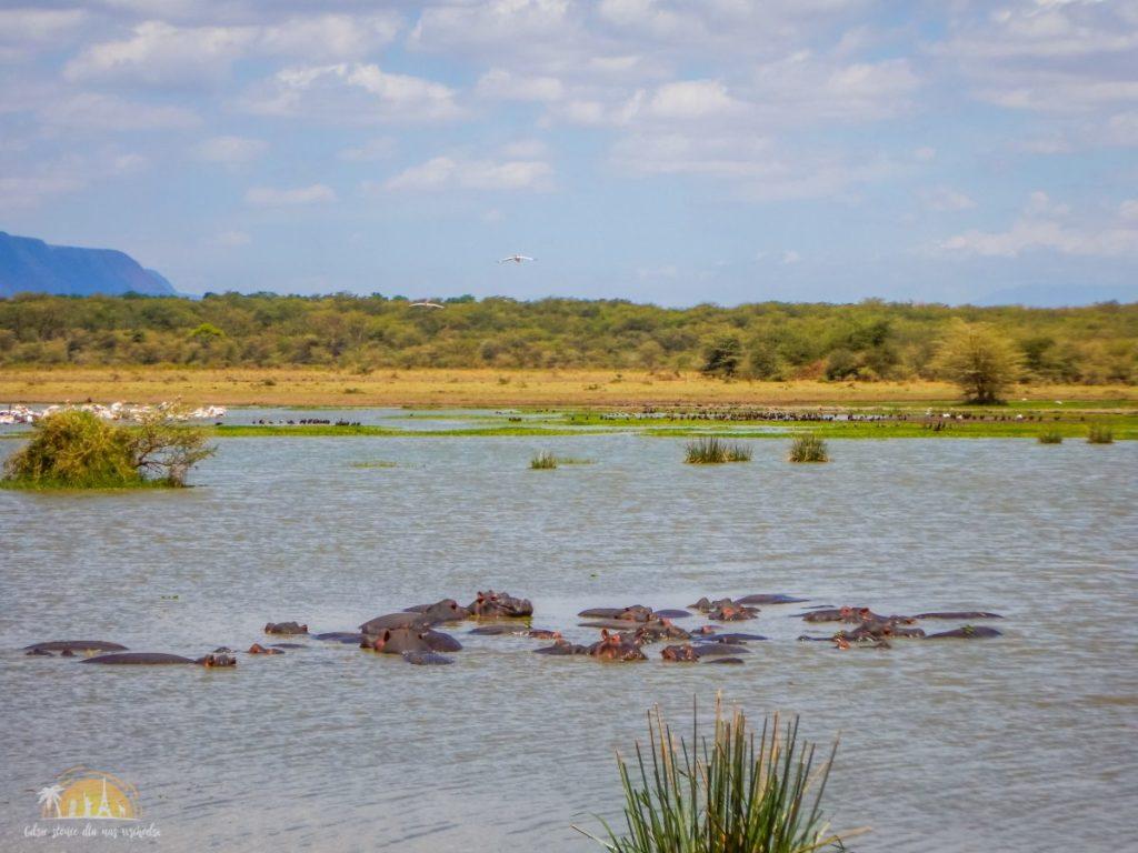 Tanzania safari Lake Manyara (24)