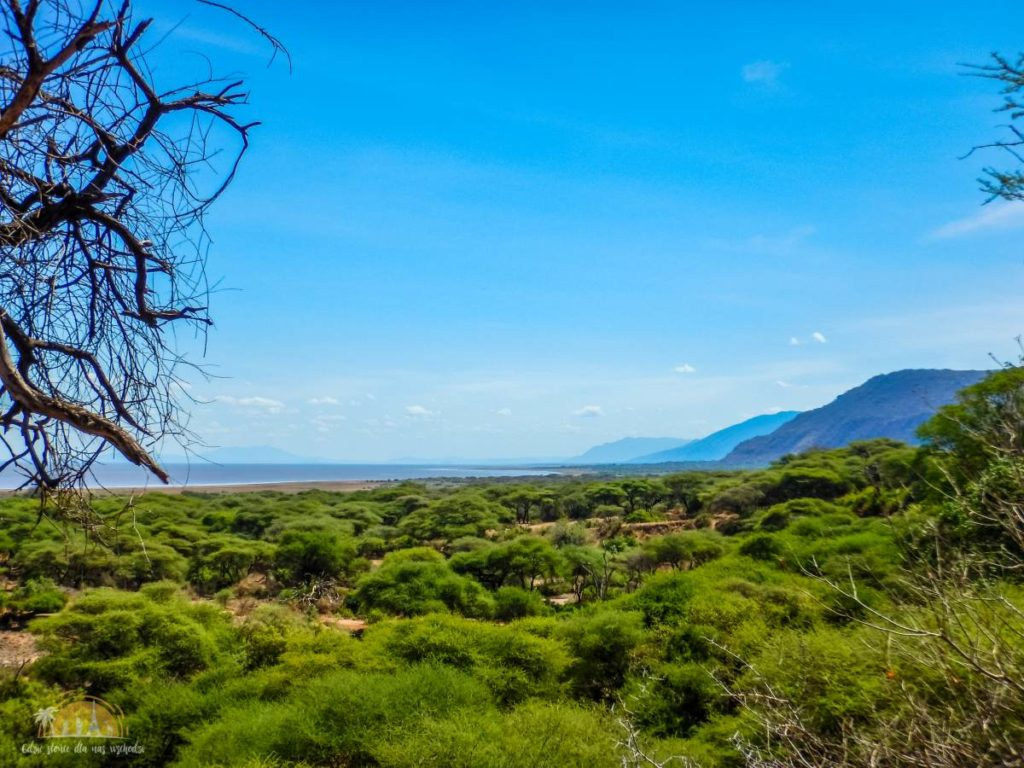 Tanzania safari Lake Manyara (33)