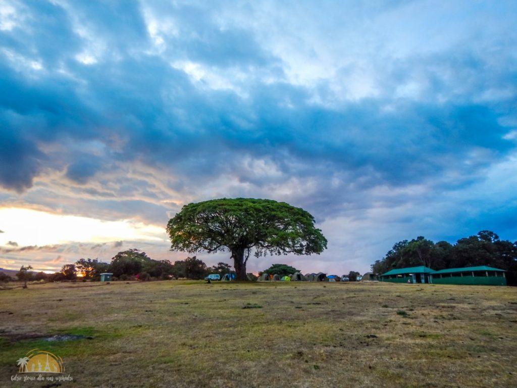 Tanzania safari Ngorongoro (76)