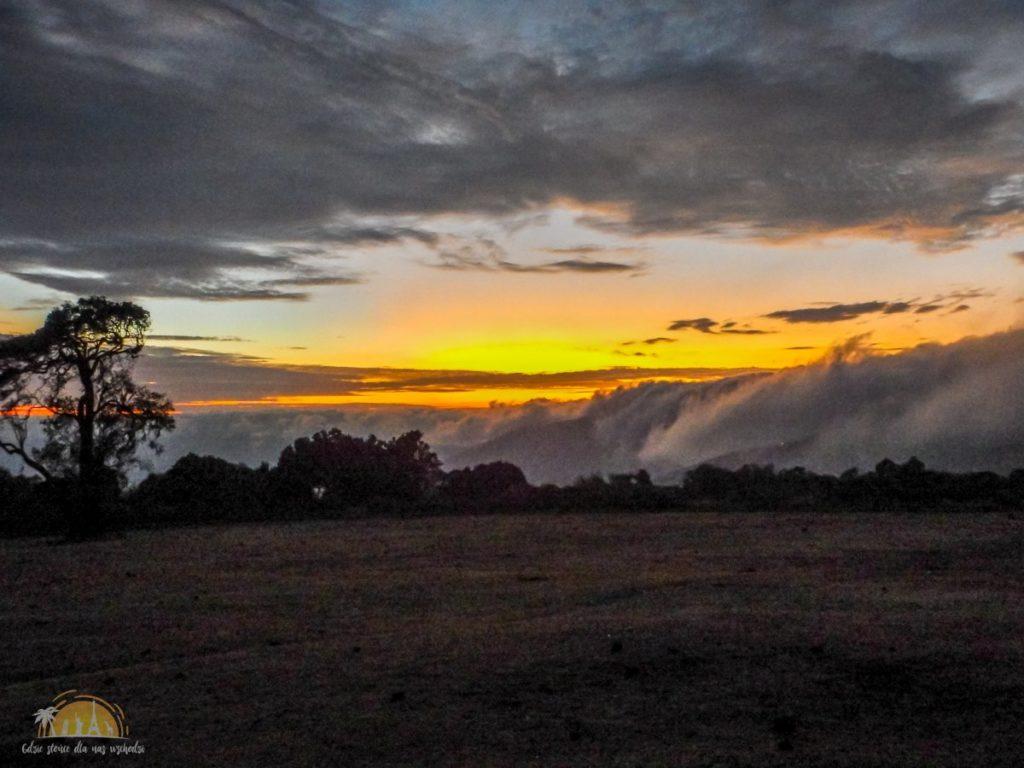 Tanzania safari Ngorongoro (77)