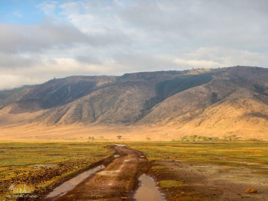 Tanzania safari Ngorongoro (79)