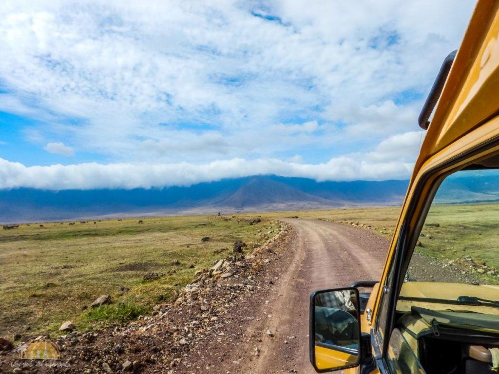 Tanzania safari Ngorongoro (99)