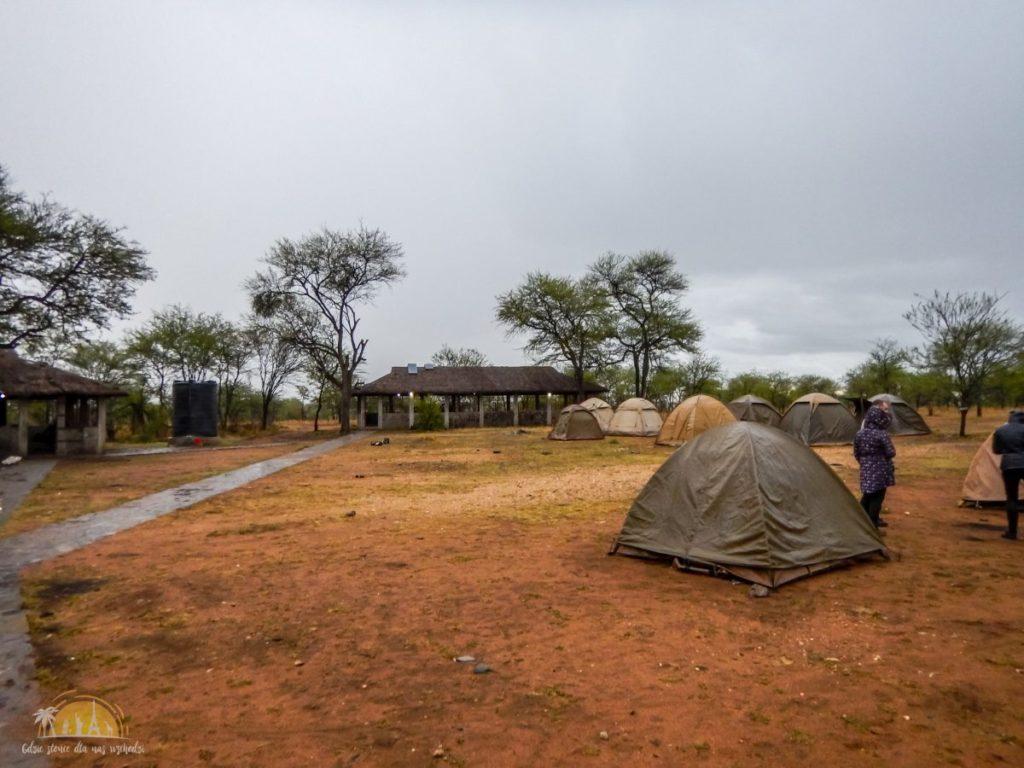 Tanzania safari Serengeti (62)
