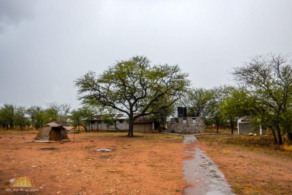 Tanzania safari Serengeti (63)