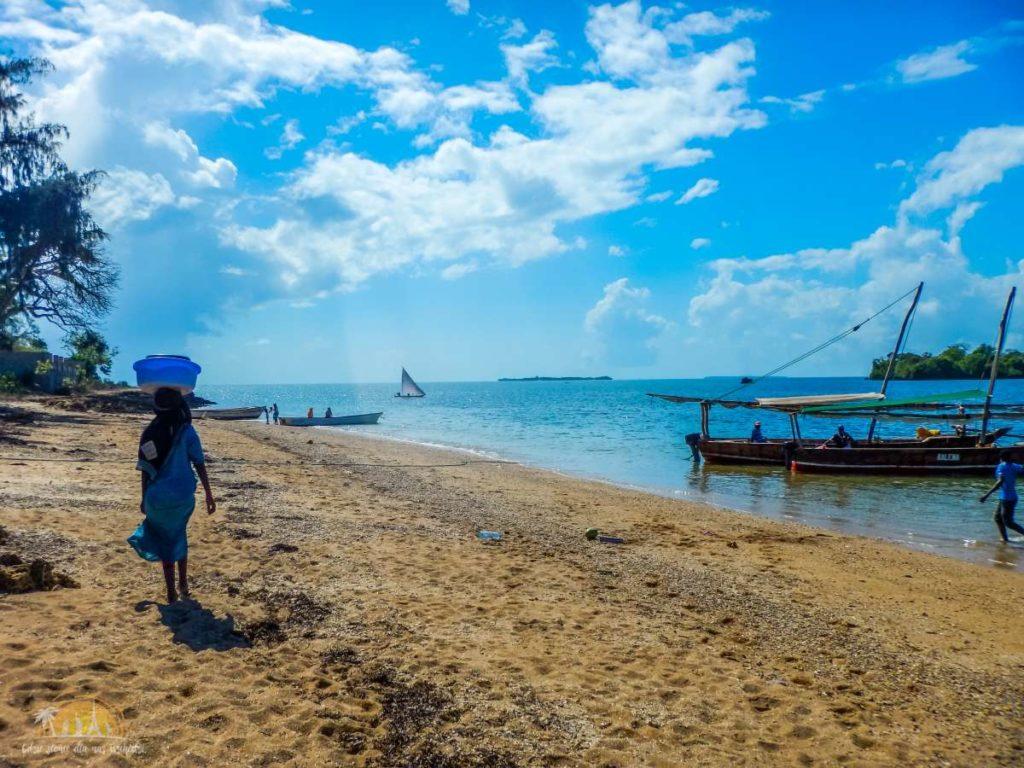 Zanzibar Atrakcje Blue Safari (2)