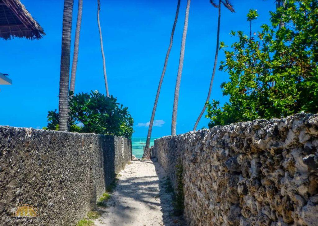 Zanzibar Atrakcje Jambiani (89)