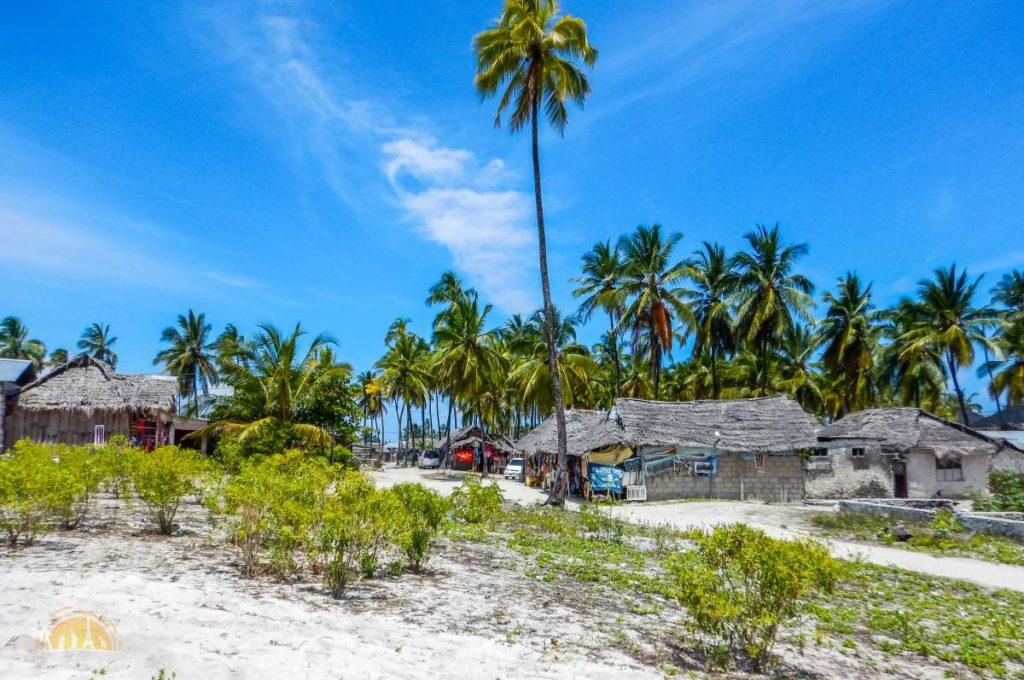 Zanzibar Atrakcje Jambiani (95)