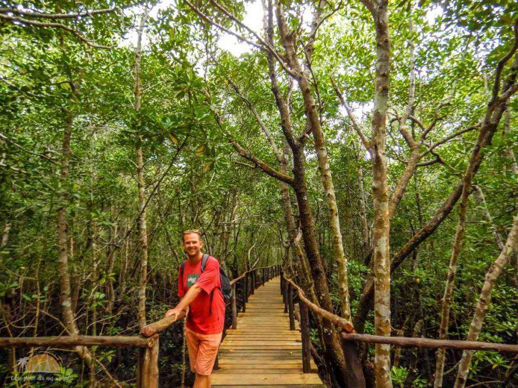 Zanzibar Atrakcje Jozani Forest (113)