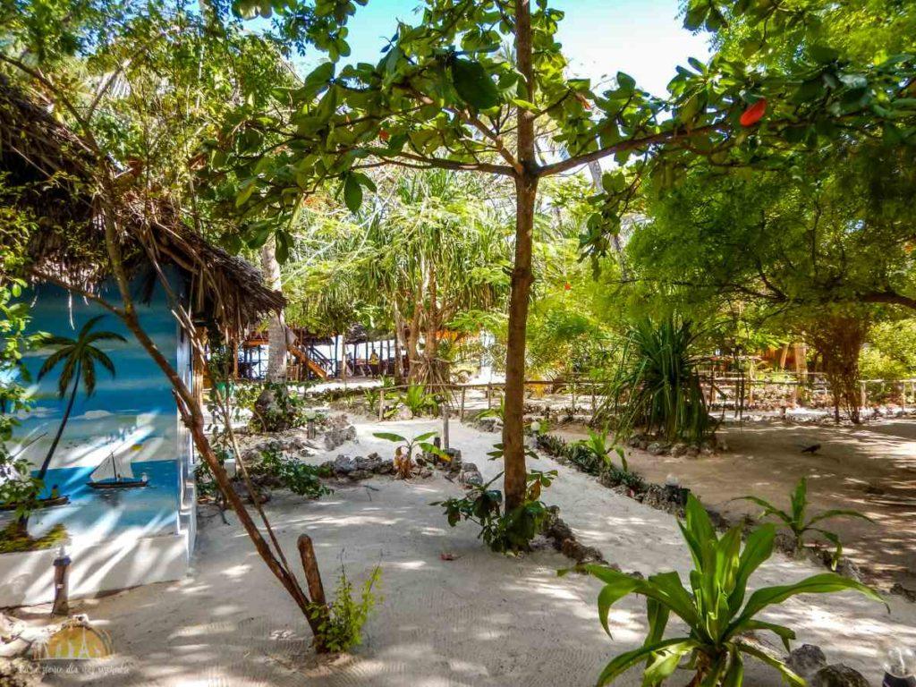 Zanzibar Atrakcje Nungwi (54)