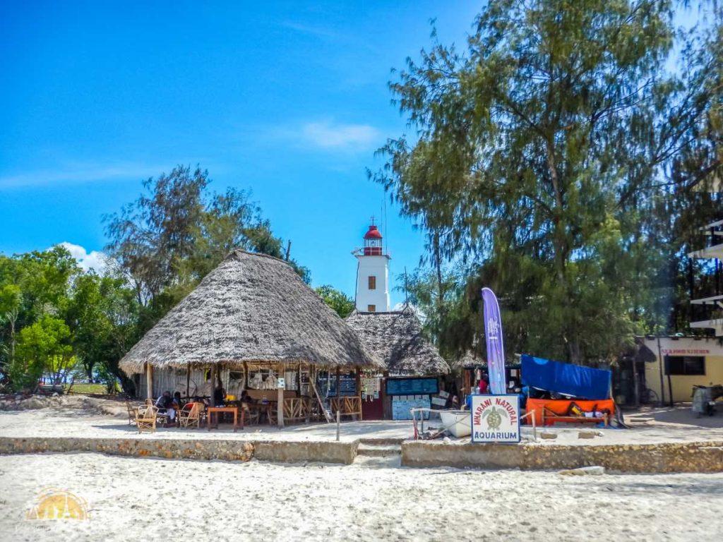 Zanzibar Atrakcje Nungwi (61)