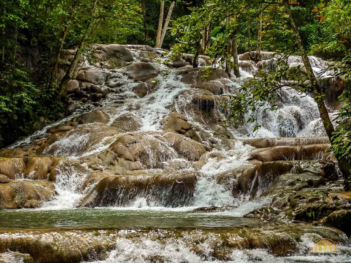 Jamajka atrakcje wodospady dunns river falls 1
