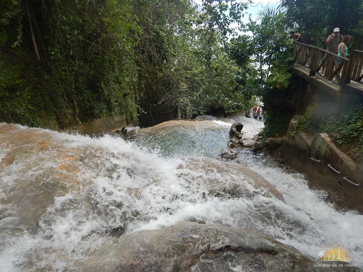 Jamajka atrakcje wodospady dunns river falls 4