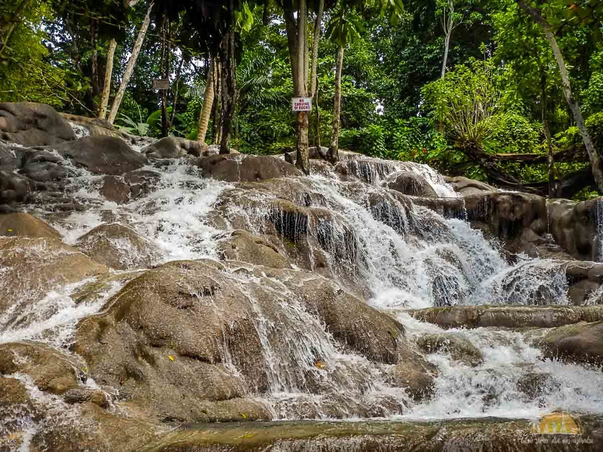 Jamajka atrakcje wodospady dunns river falls 7