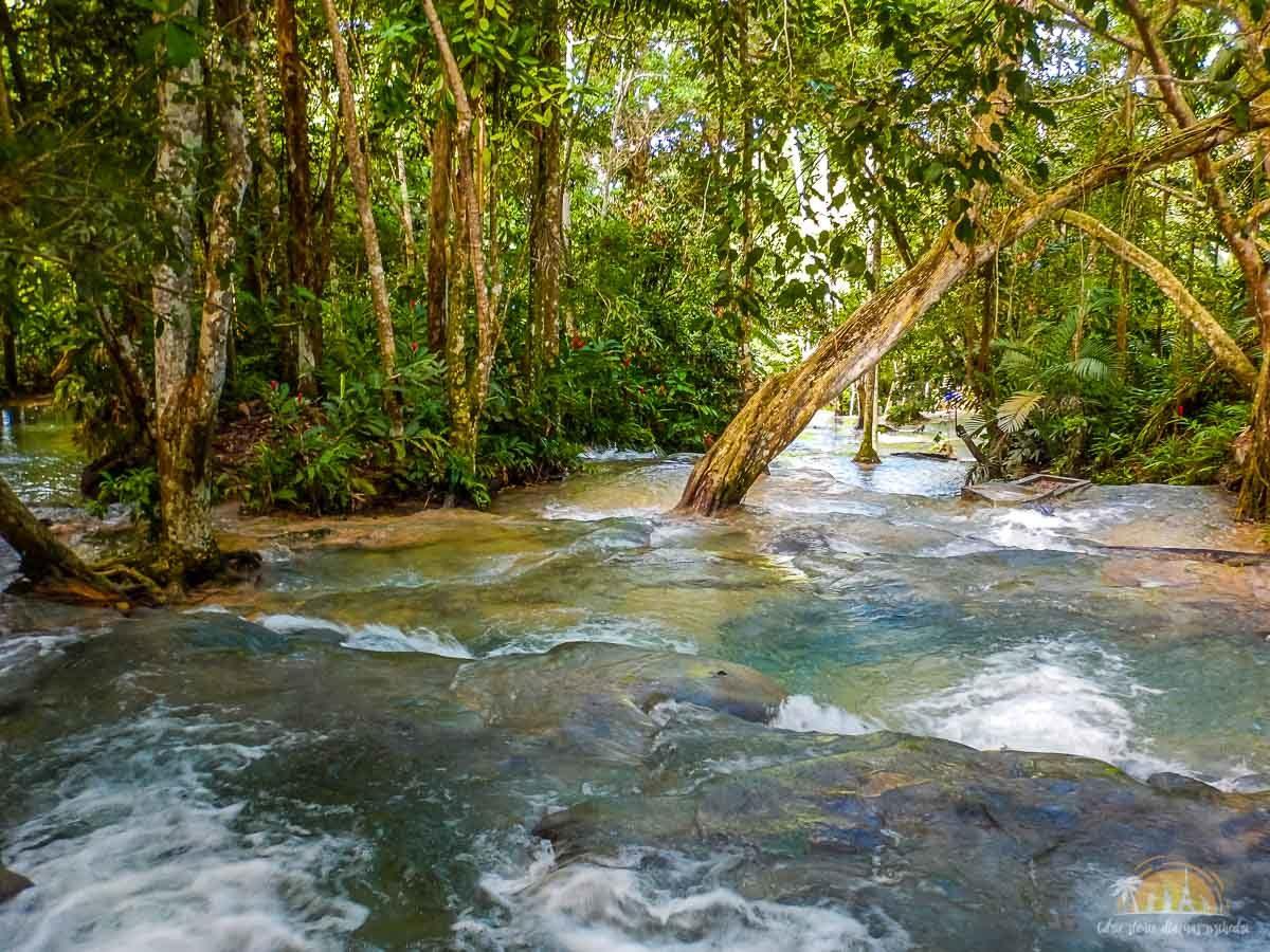 Jamajka atrakcje wodospady dunns river falls 8