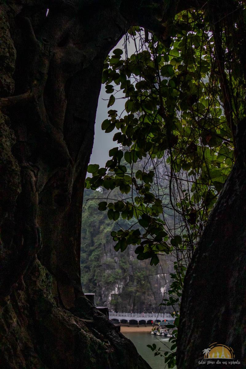 Wietnam Ha Long atrakcje 9