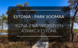 Estonia - Park Narodowy Soomaa - Bagniste atrakcje