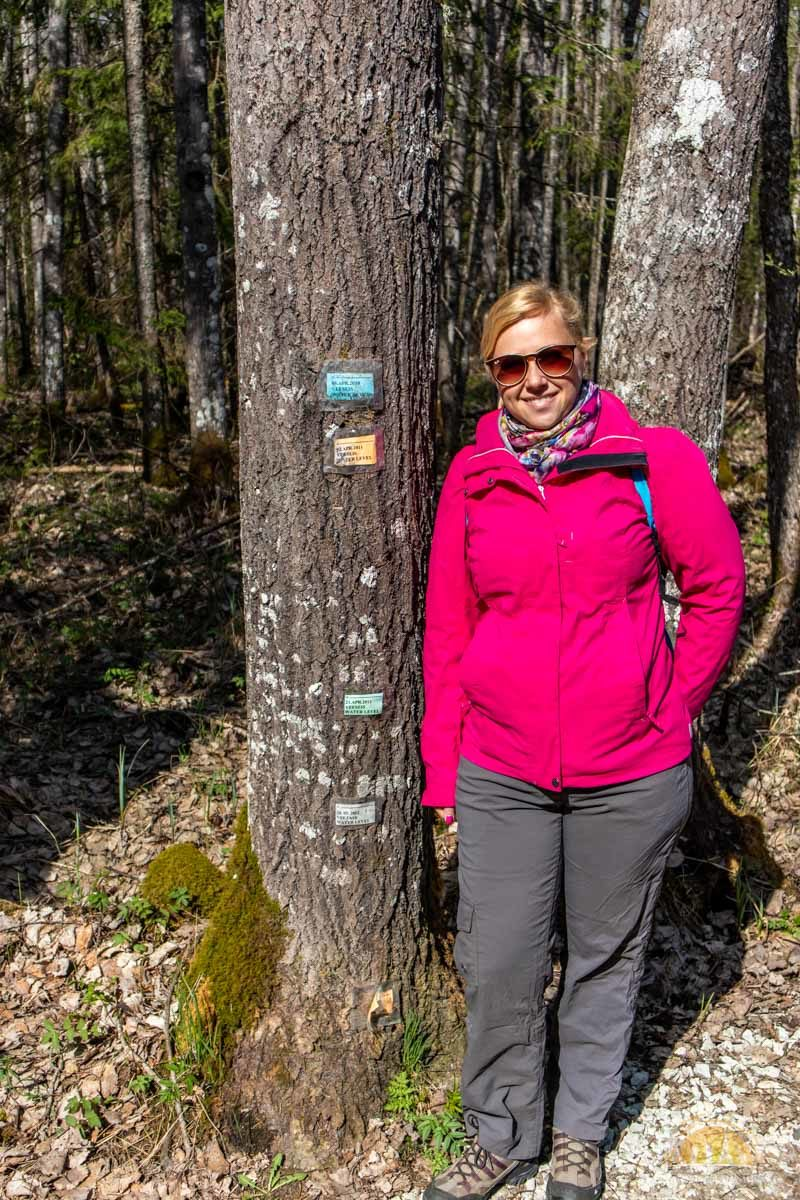Soomaa Park Narodowy Estonia atrakcje roztopy 3