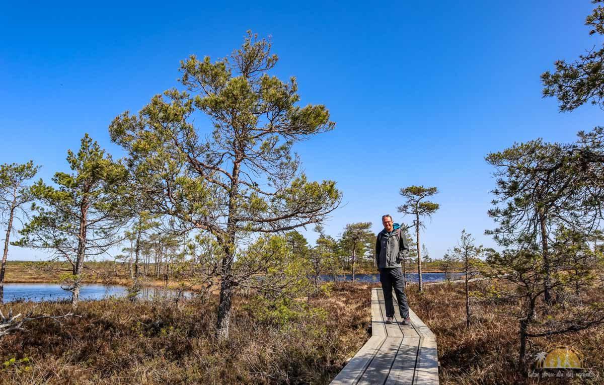 Soomaa Park Narodowy Estonia atrakcje spacer 13