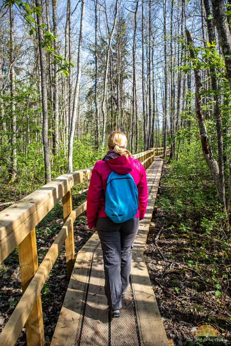 Soomaa Park Narodowy Estonia atrakcje treking 1