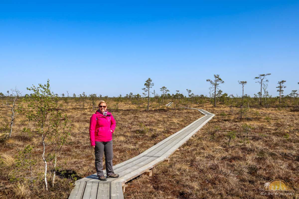 Soomaa Park Narodowy Estonia atrakcje treking 9
