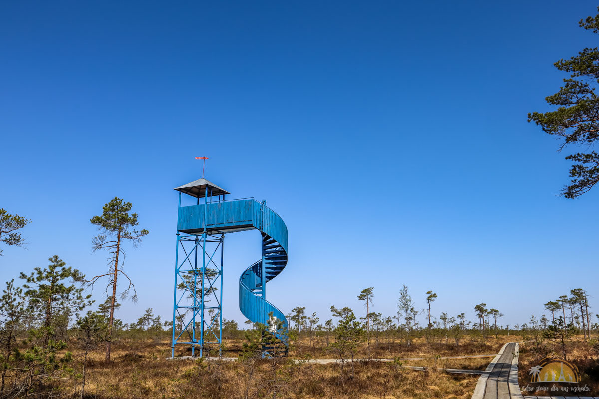 Soomaa Park Narodowy Estonia atrakcje wieza 6