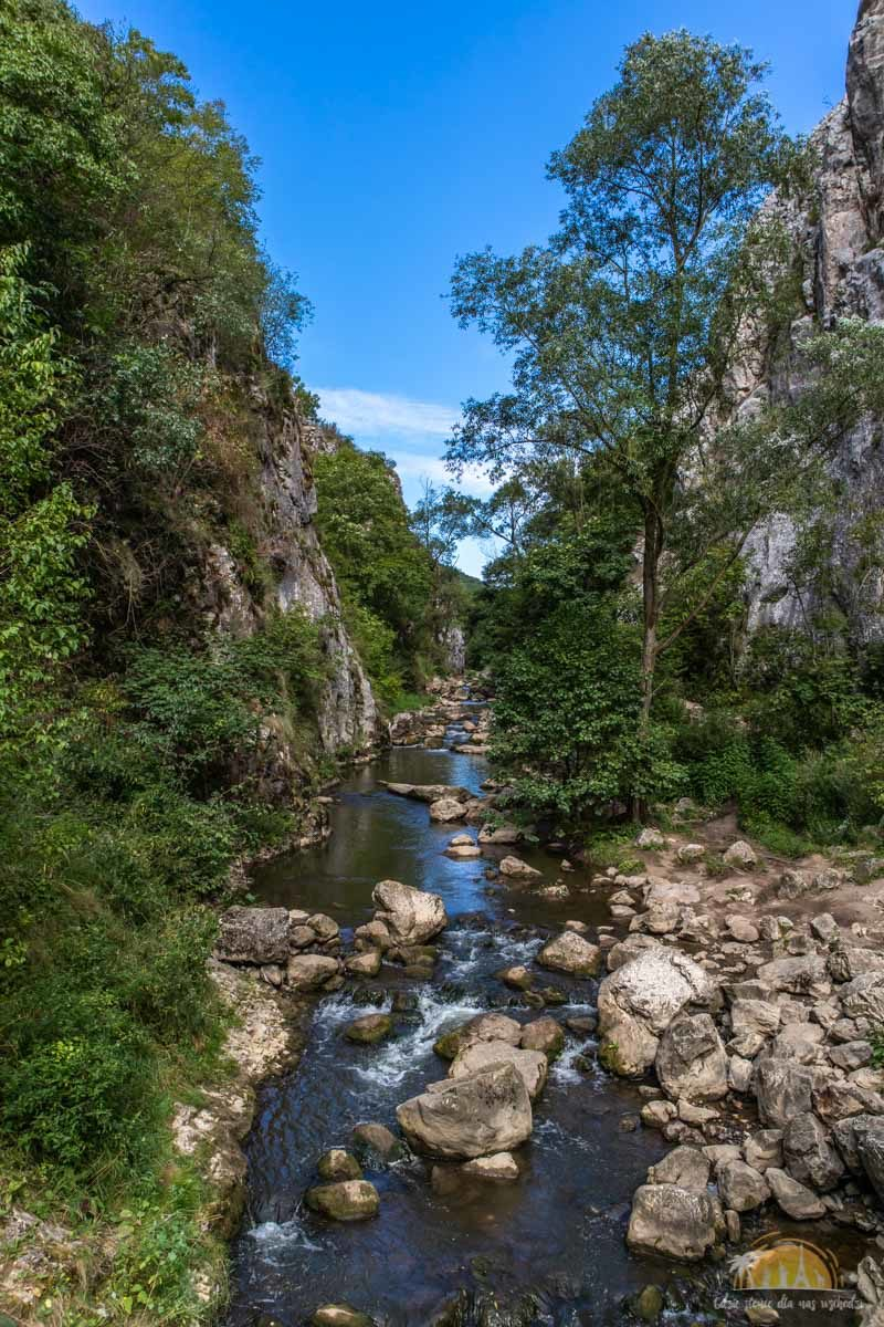Wąwóz Turda Rumunia atrakcje 14