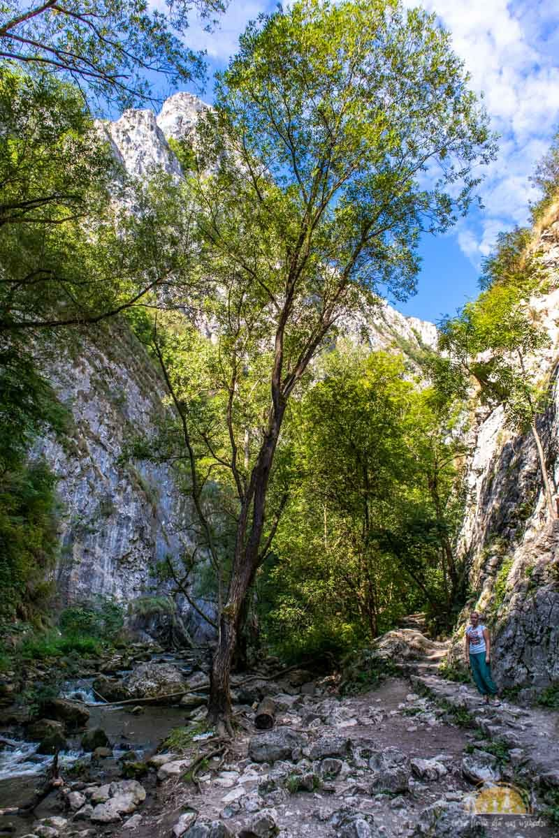 Wąwóz Turda Rumunia atrakcje 4