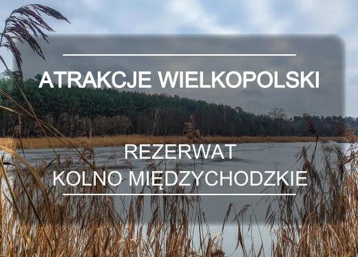 Wielkopolska Kolno Miedzychodzkie MINI